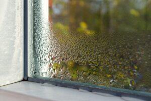 humidity-on-window